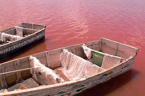 lago-color-rosa-retba